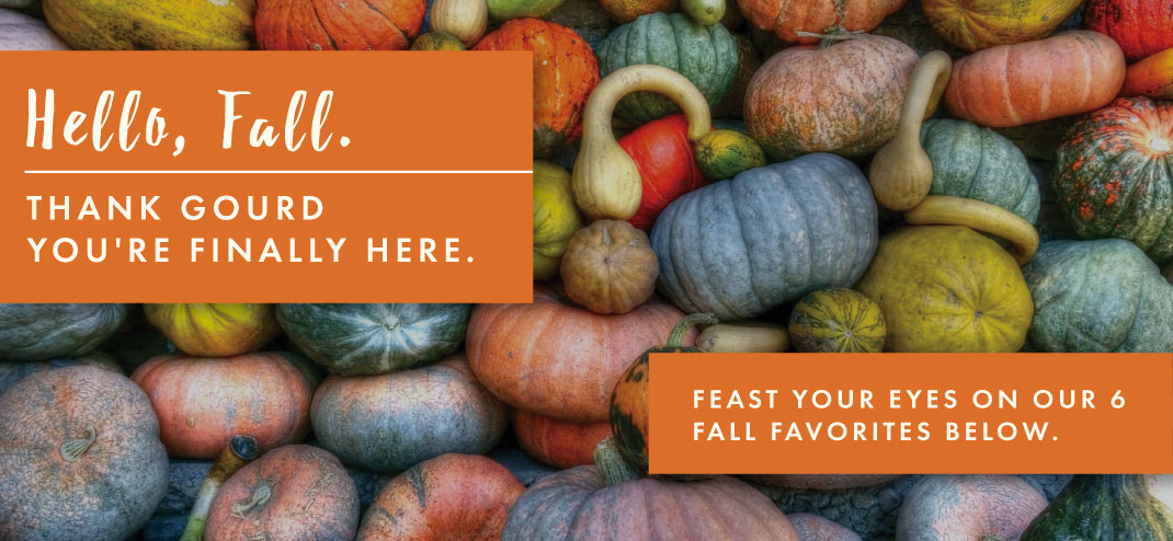 Hello, Fall. THANK GOURD YOU'RE FINALLY HERE.